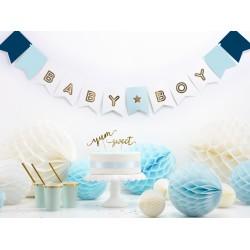 Baby Boy Baby Shower Bunting