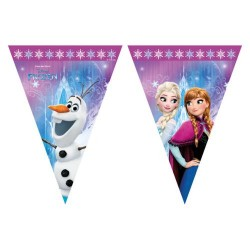 Disney Frozen 1 Party Banner