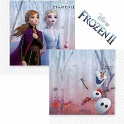 Disney Frozen 2 Paper Napkins
